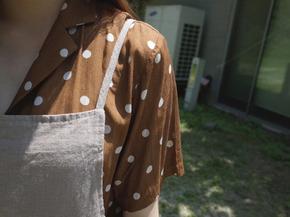 brown dot blouse